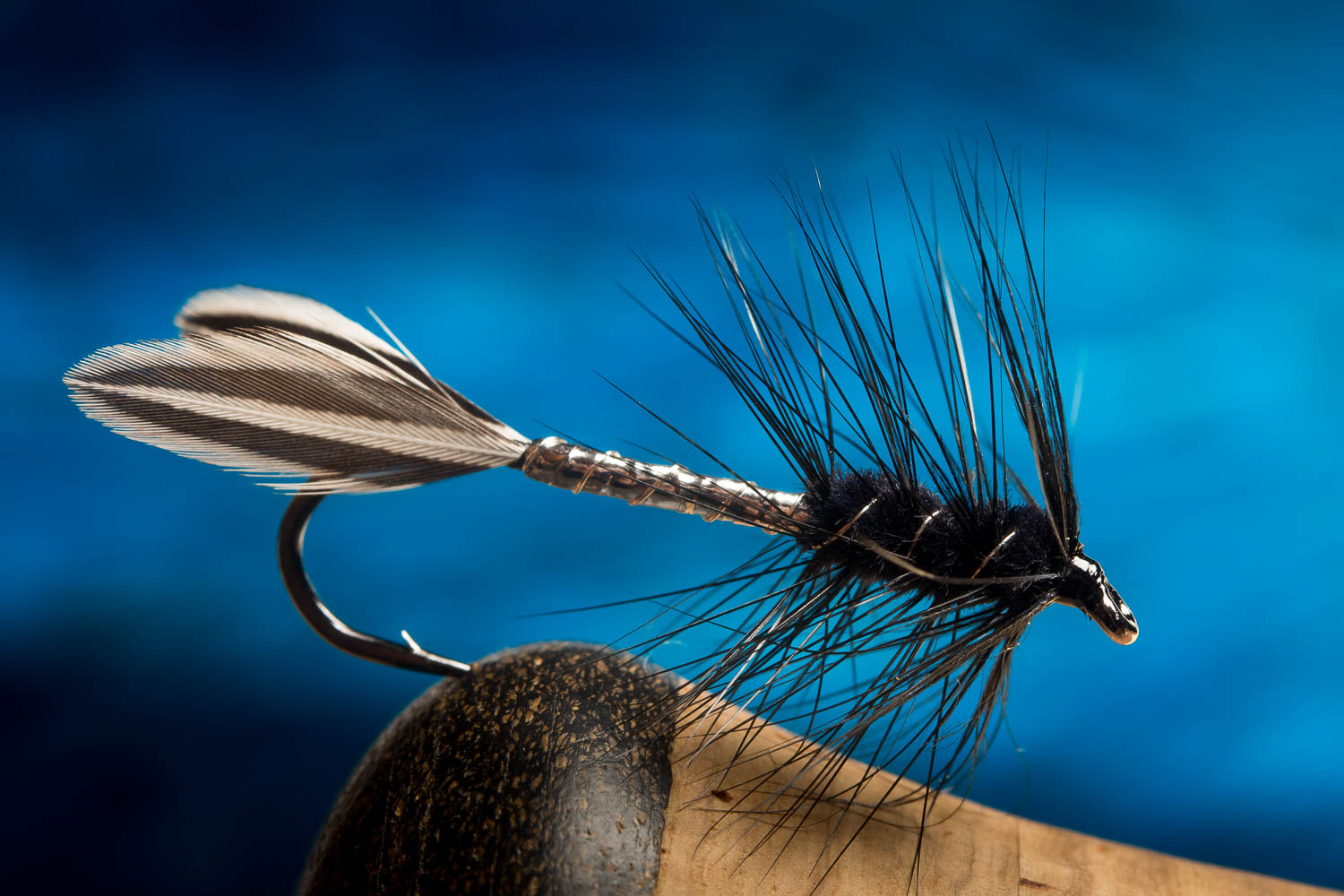 1.This has 2 body feather from Jungle Cock tied splayed as tail - and a black hackle palmered over the front part of the body. This is often referred to as the All Black version, though it has a silver part of the body. This is Pete Narancich's original, and the favourite of Mr Bates.