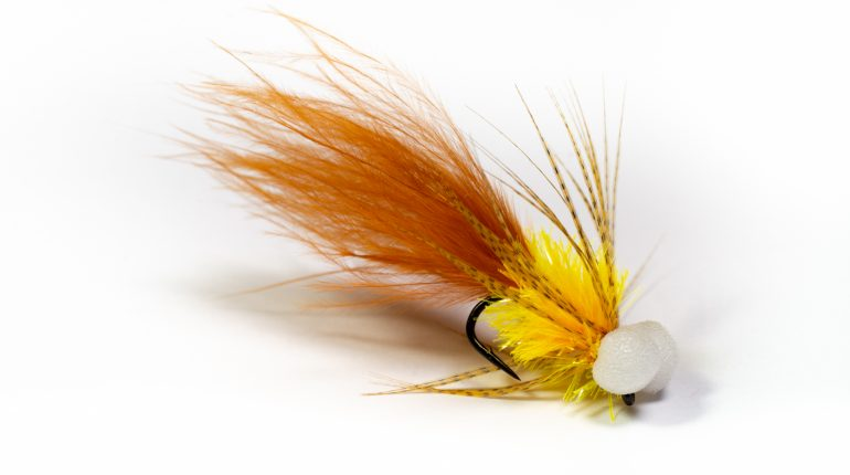 Burnt orange Booby Fly
